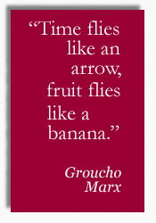 Groucho quote